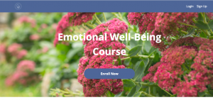 Emotional Wellbeing Course by Catherine Nabbs